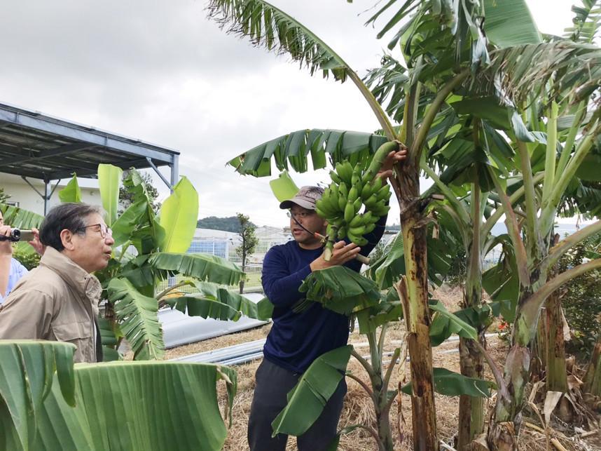 仲座さんから島バナナについて説明を受ける森田正光さん
