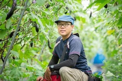 加藤農園 できる限り野菜へのストレスが少ない環境作りを心がけながら栽培されたナスです。