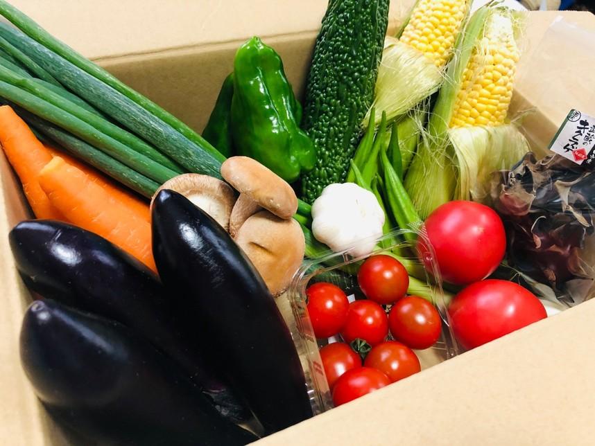 10人の農家が力を合わせ、いろいろな野菜をBOXにお入れします。