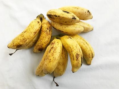 島バナナ背面